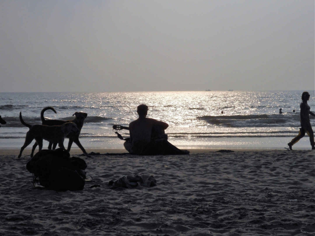 things to do in arambol beach goa