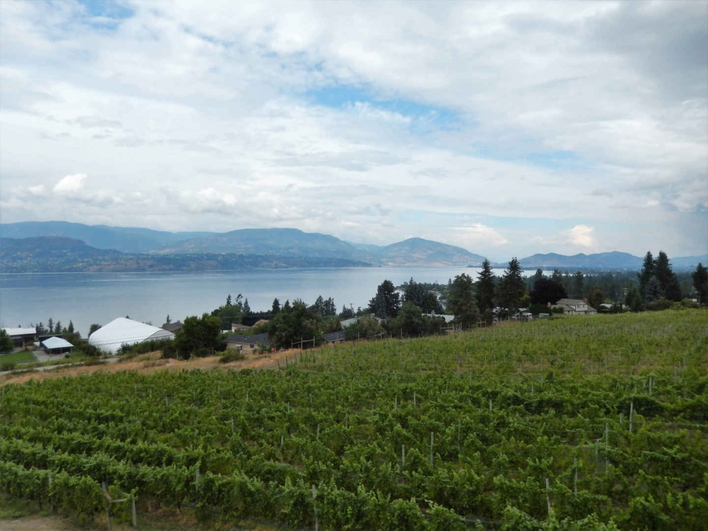 wine tasting in kelowna