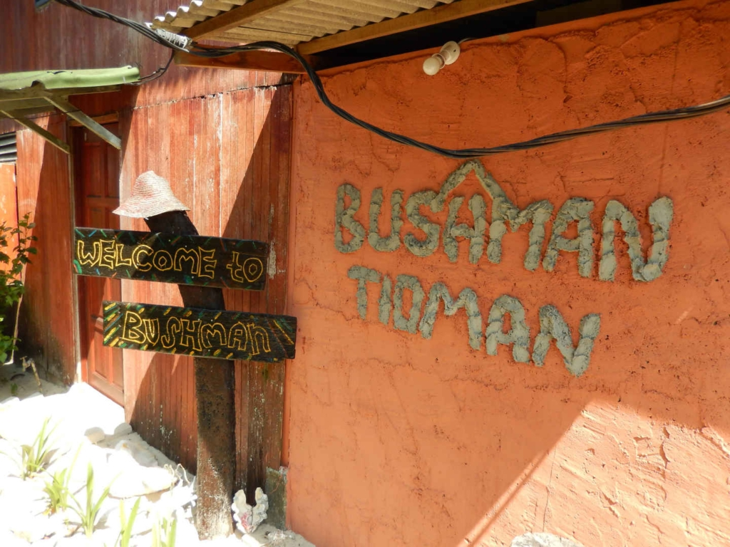 tioman island activities